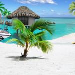 <b>Tahiti nous voilà</b> <br />